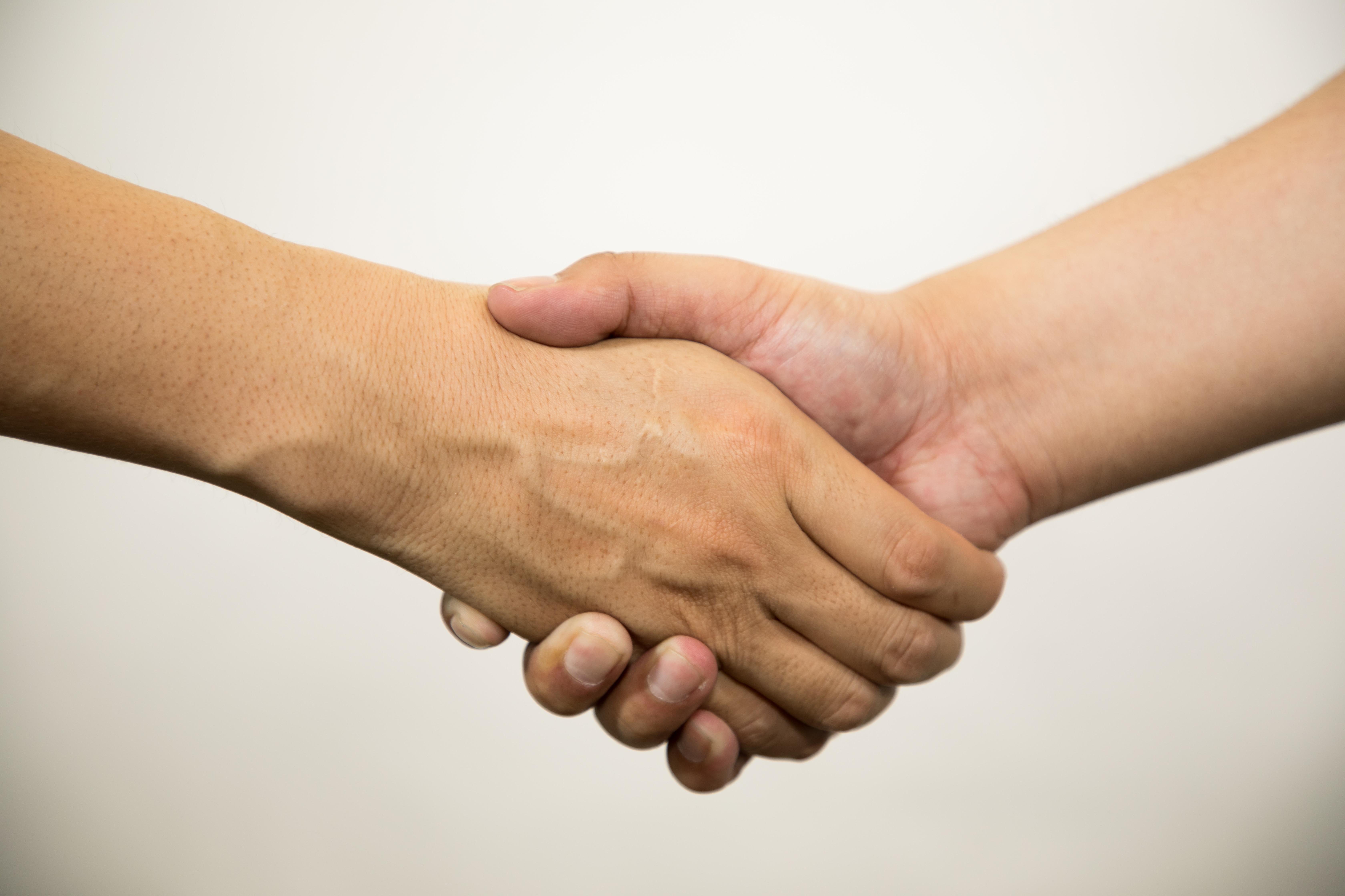 握手をする