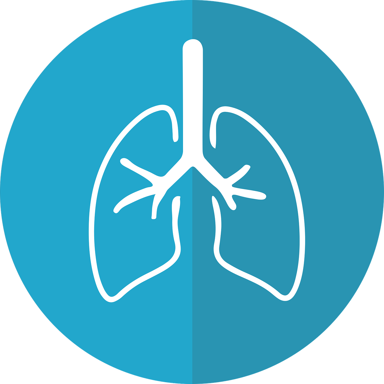プルームテックを思いっきり吸い込む肺